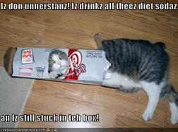 Diet Sodaz
