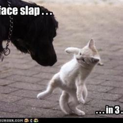 Epic Face Slap