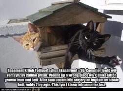 Teleportation Experiment #36