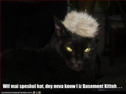 Speshul Hat