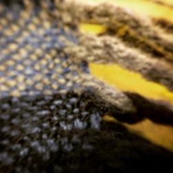 Macro - Fabric (11)
